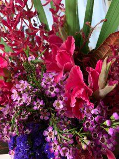 紅系の花🌸集合
